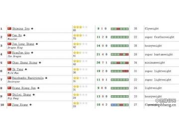 中国拳王世界排名
