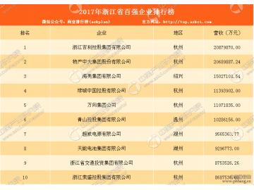 2017年浙江省百强企业排行榜