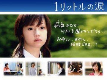 2014日本感人电视剧推荐