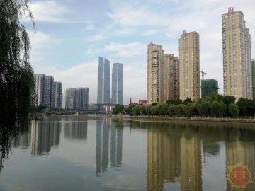 2019浙商全国500强排行榜