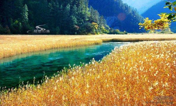 中国最美的十大秋色排行榜