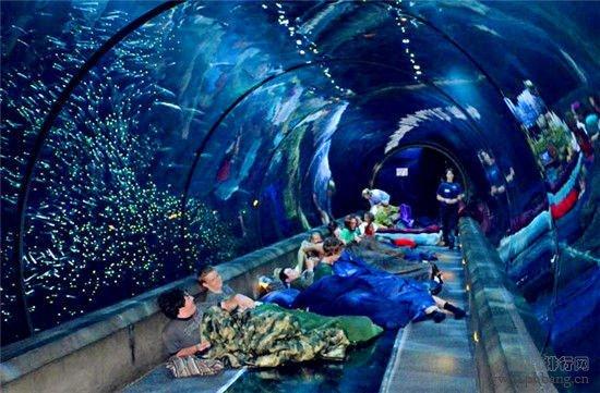 盘点世界十大最酷海底旅馆