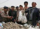 喀什有什么特产?新疆喀什特产排行榜